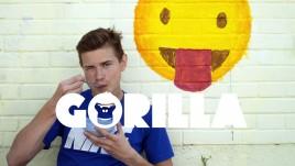 Gorilla_Main